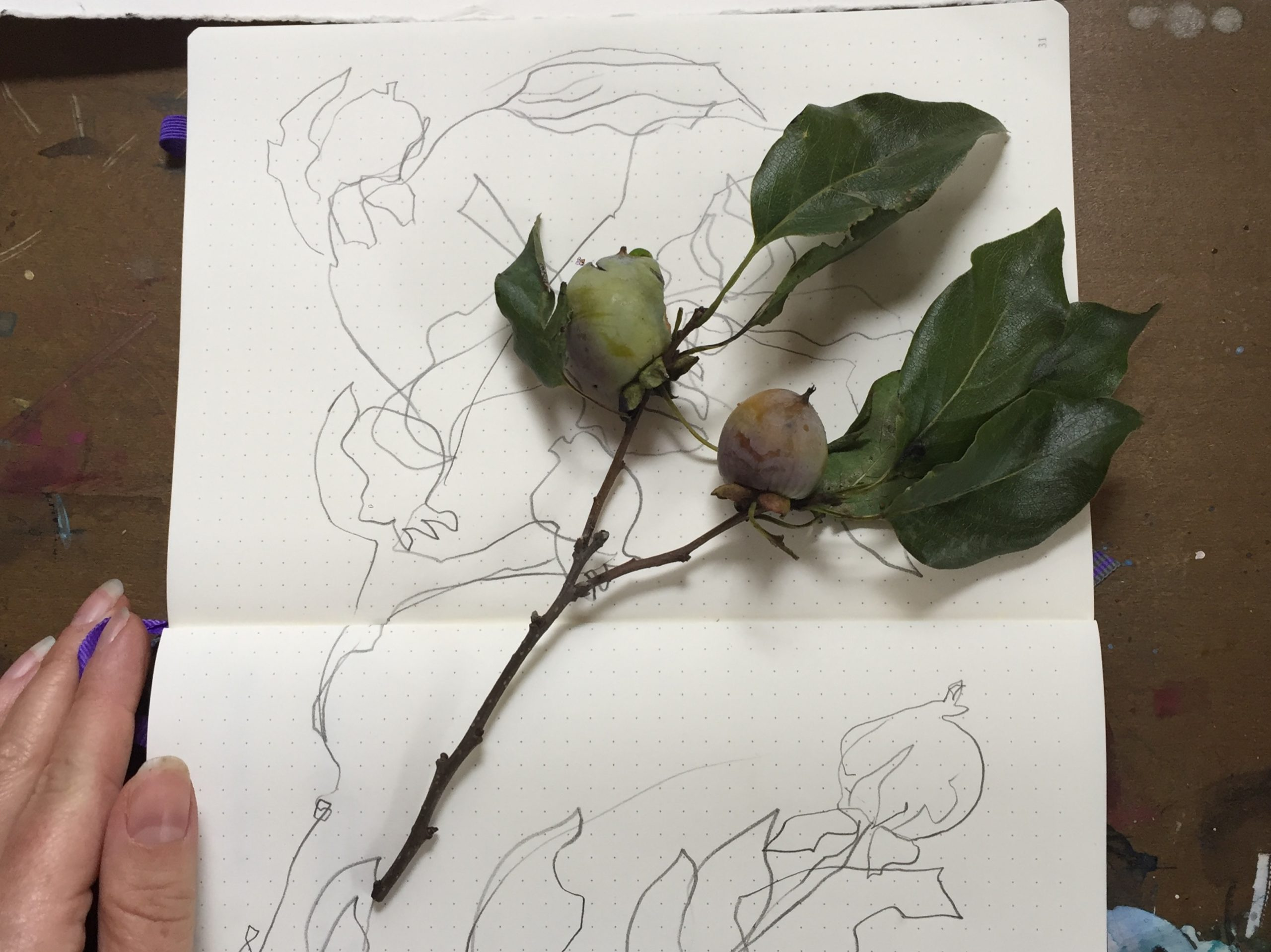 Learning trust with blind contour drawing